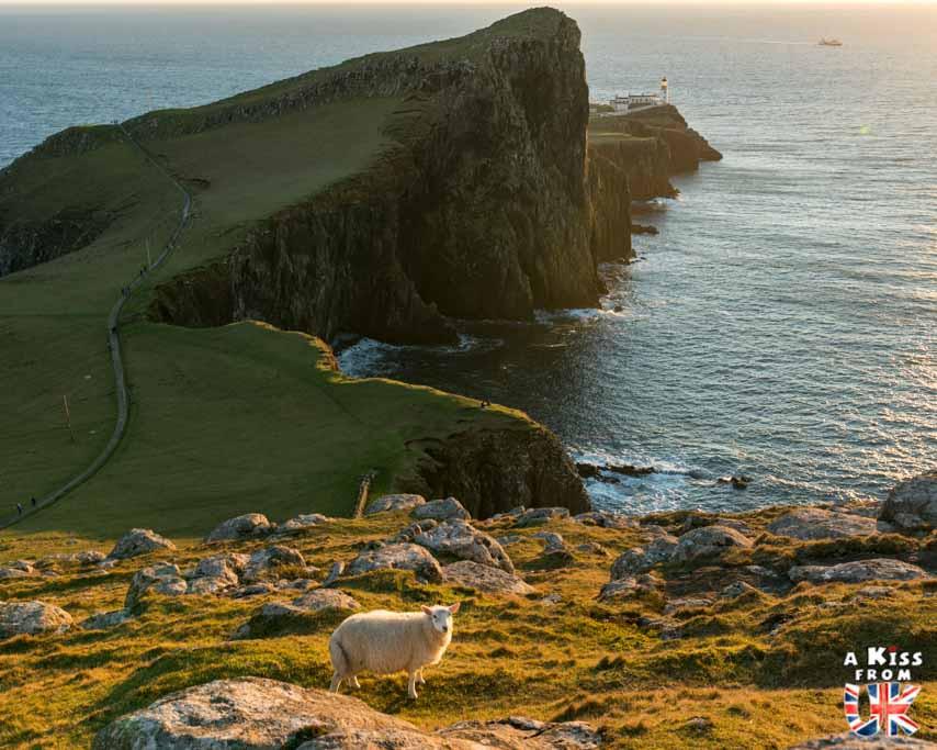 Neist Point sur l'île de Skye -  50 photos qui vont vous donner envie de voyager en Ecosse après l'épidémie de coronavirus - Découvrez en image les plus beaux endroits d'Ecosse à visiter.