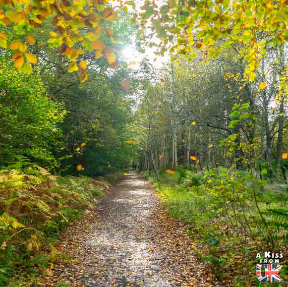 Autour de Pitlochry - Roadtrip de 8 jours en Ecosse à l'automne - Itinéraire de voyage en Ecosse par A Kiss from UK, guide et blog voyage sur l'Ecosse, l'Angletere et le Pays de Galles