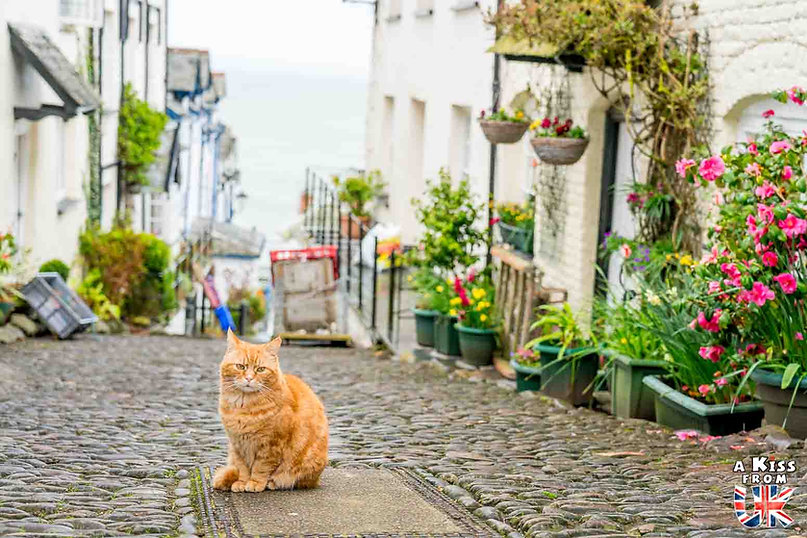 Clovelly dans le Devon - Visiter l'Angleterre : les incontournables ! - 25 endroits à voir absolument en Angleterre en dehors de Londres - A Kiss from UK, le guide et blog du voyage en Grande-Bretagne.