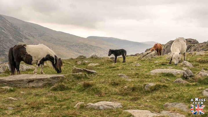 Llyn Idwal - Que voir dans le Parc National du Snowdonia au Pays de Galles ? Visiter le Snowdonia avec A Kiss from UK, blog du voyage en Ecosse, Angletere et Pays de Galles.