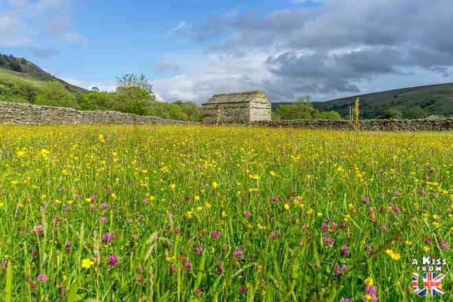 Les Yorkshire Dales en fleurs - Découvrez les plus beaux paysages d'Angleterre avec notre guide voyage qui vous emménera visiter les plus beaux endroits d'Angleterre.