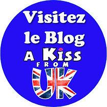 visitez le blog visuel rond BD200.jpg