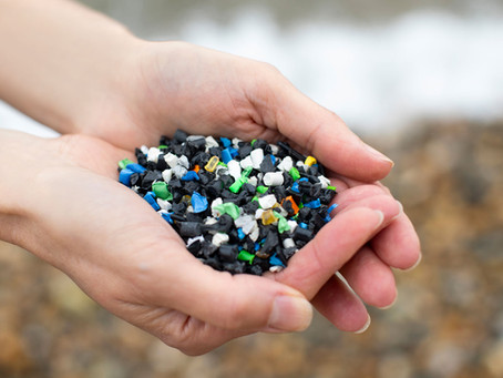 Rifiuti e plastica, siamo in tempo per ridurre l'impatto ambientale?