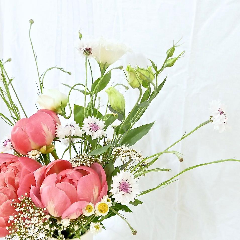 peony+chrysanthemum