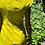Thumbnail: Versace yellow dress preowner size 40,good condition