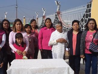 Proyecto Mujeres Puebla 2019