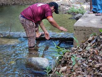 """Día Mundial del Agua 2014 Ayutla de los Libres: """"Agua y Energía"""""""