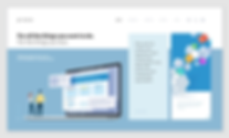 example 1 home page.webp