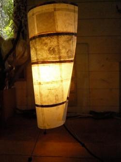 Lampe collection végétale.jpg