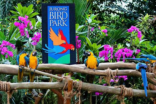 Bird Park Singapore (A)