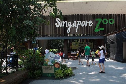 Zoo Safari Singapore (A)