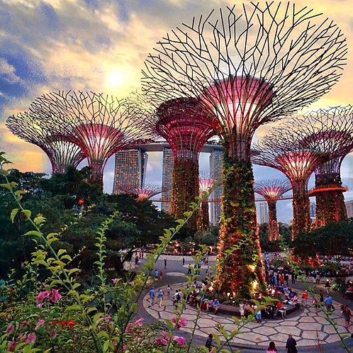 Garden By The Bay Singapore (C)