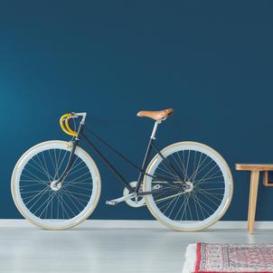 vélo (1).png