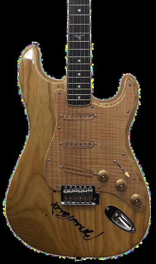 raitt_guitar_color.png