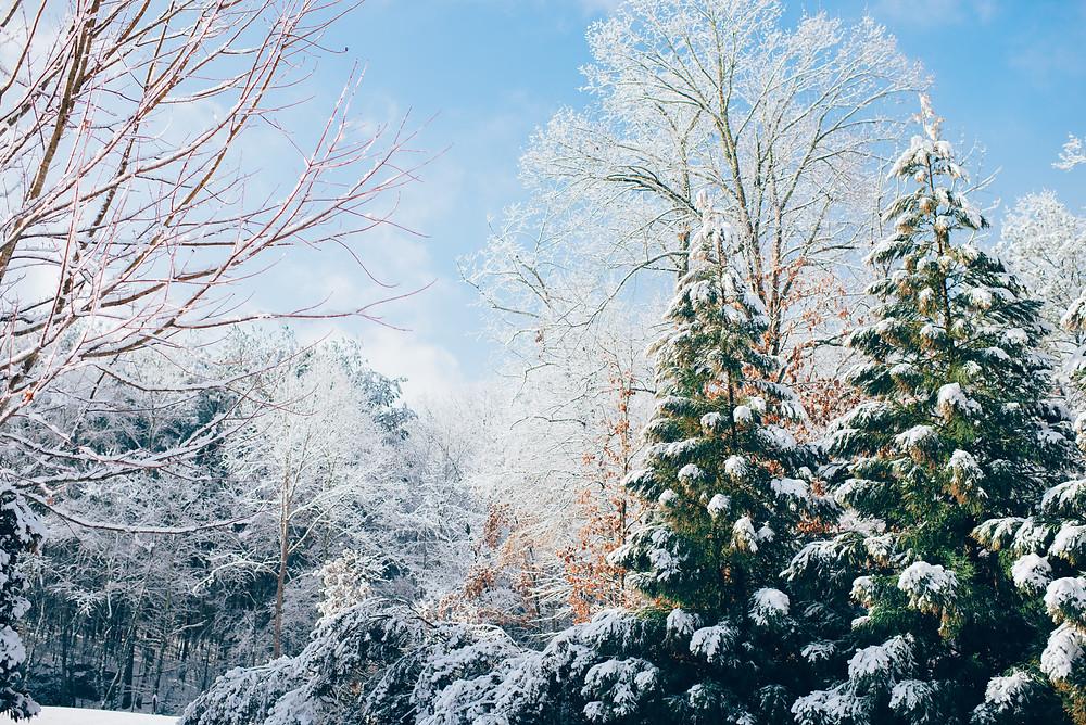 Paysages d'hiver microvoyage que faire autour de Lyon pendant les fêtes