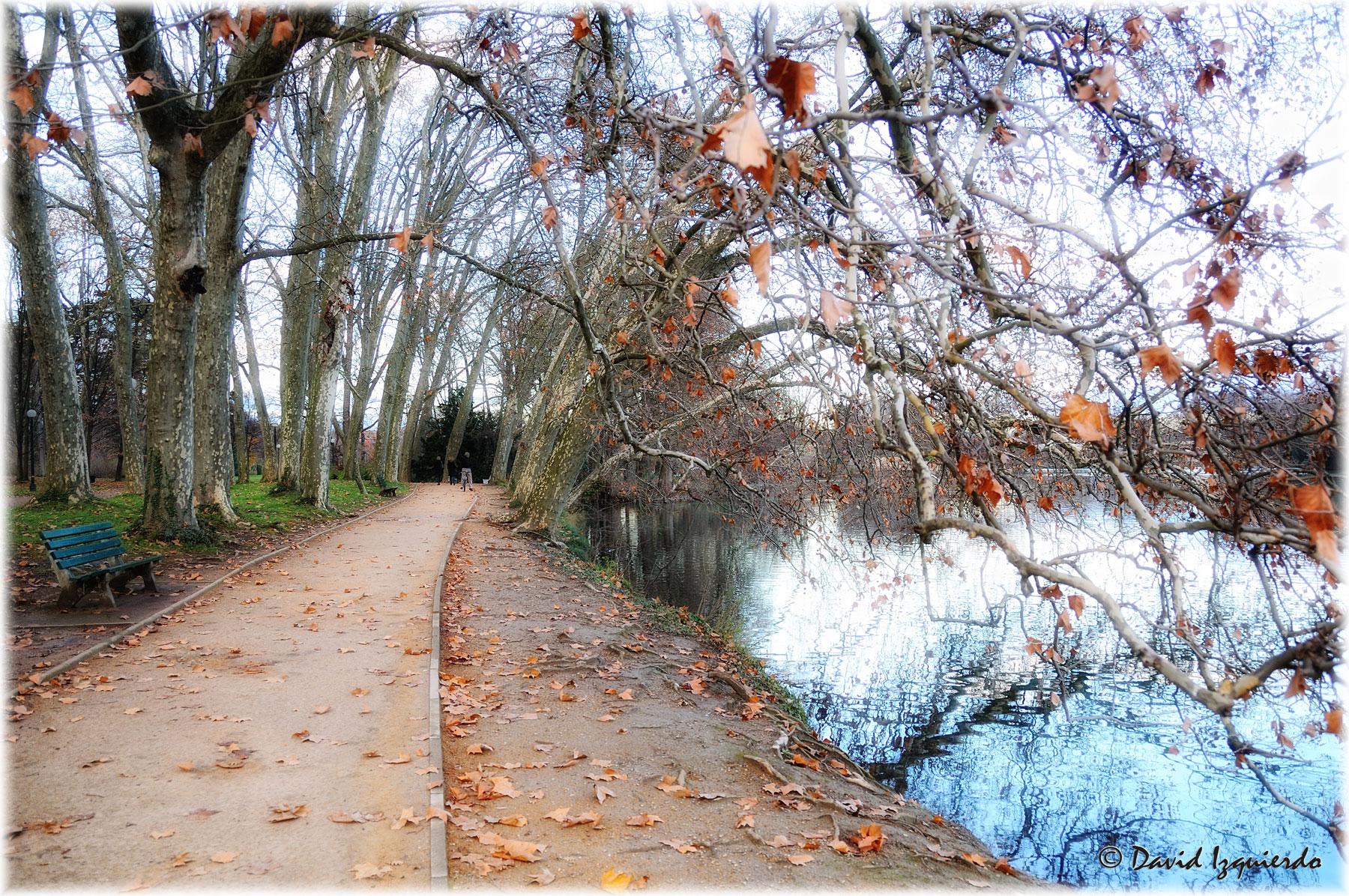 Paseo junto al lago
