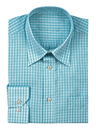 Blue and white gingham shirt