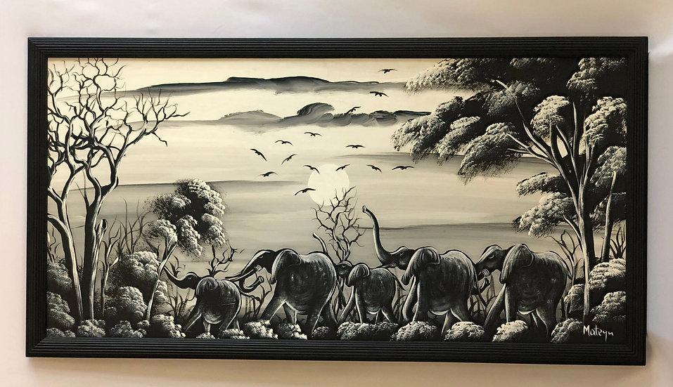 """""""Elephant Family"""""""