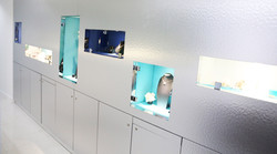 Showroom de diamant - Oxygn concepts