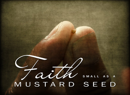 You have a Seed filled with Potential and Purpose