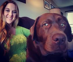 dog sitting Pikesville