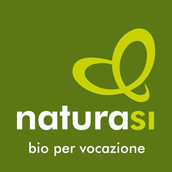 Logo-nsi-2015-quadrato-RGB