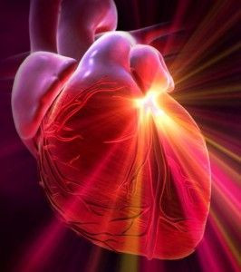 Your Heart - Your Superpower!