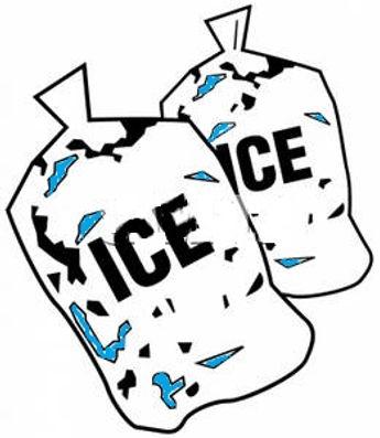 2 Bags Ice.jpeg