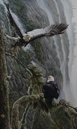 Eagles by the Waterfall