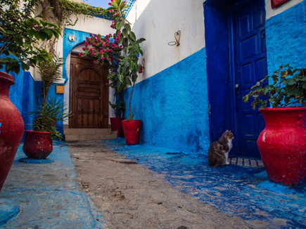 colourful Alleys in The Kasbah of the Udayas