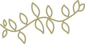 CIC Website Icon Vine (Gold).png