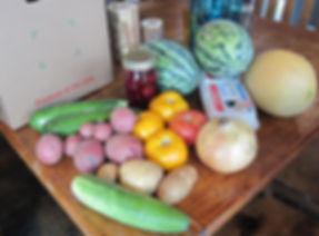 local organic CSA summer share