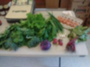 early spring organic csa box