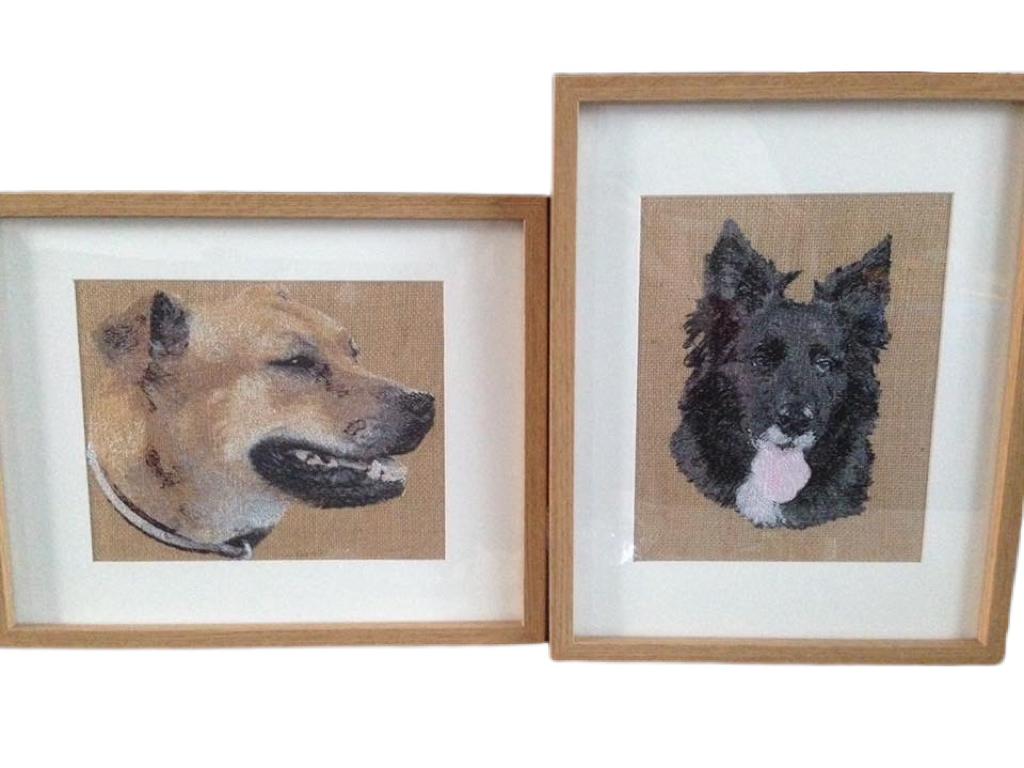 Photo Digitising Dogs