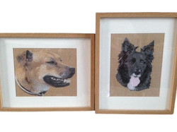 Photo Digitising Dogs