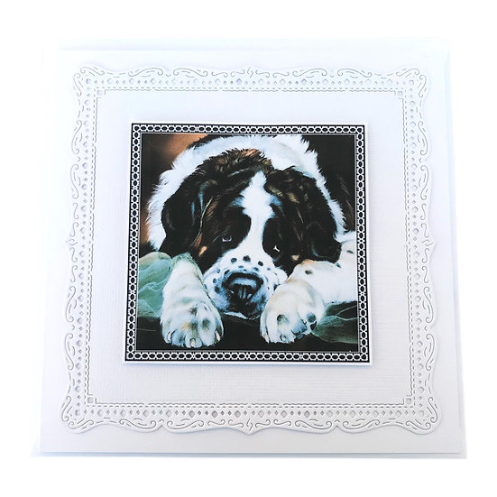 St Bernard Dog Greetings Card