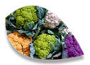 Légumes fleur