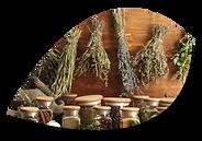 Aromatiques sèches