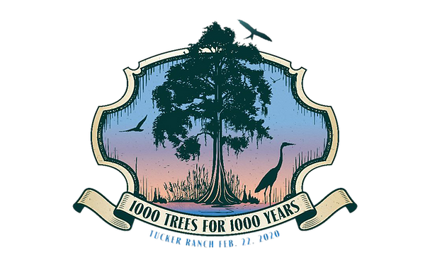 1000 Trees.png