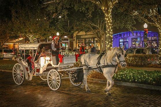 horse drawn carriage tour_01.jpg