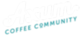AXUM-LOGO_01-Alpha-Words_WHITE.png