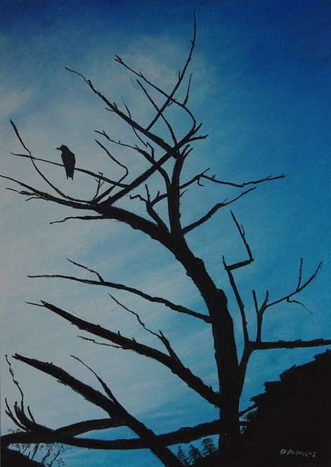 Raven in Tree (SOLD)