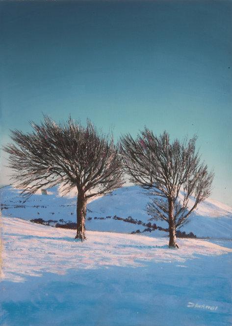 Two Trees on Moel y Parc