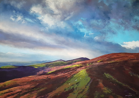 The Clwydians (sold)