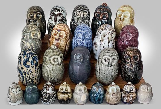 parlament of owls  2019