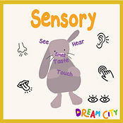 Play & Learn-Sensory logo-01.jpg