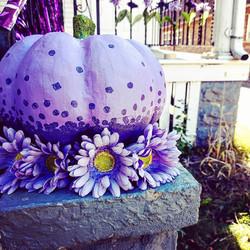 Purple Porch Pic1