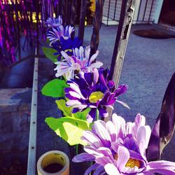 Purple Porch Pic3