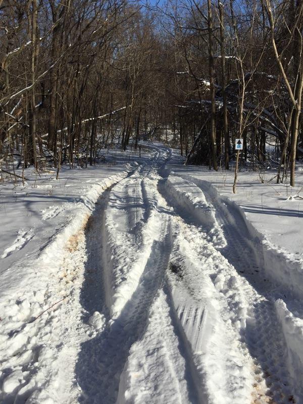 SnowPic.jpg