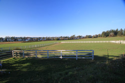 Spacious grassy pastures with a view
